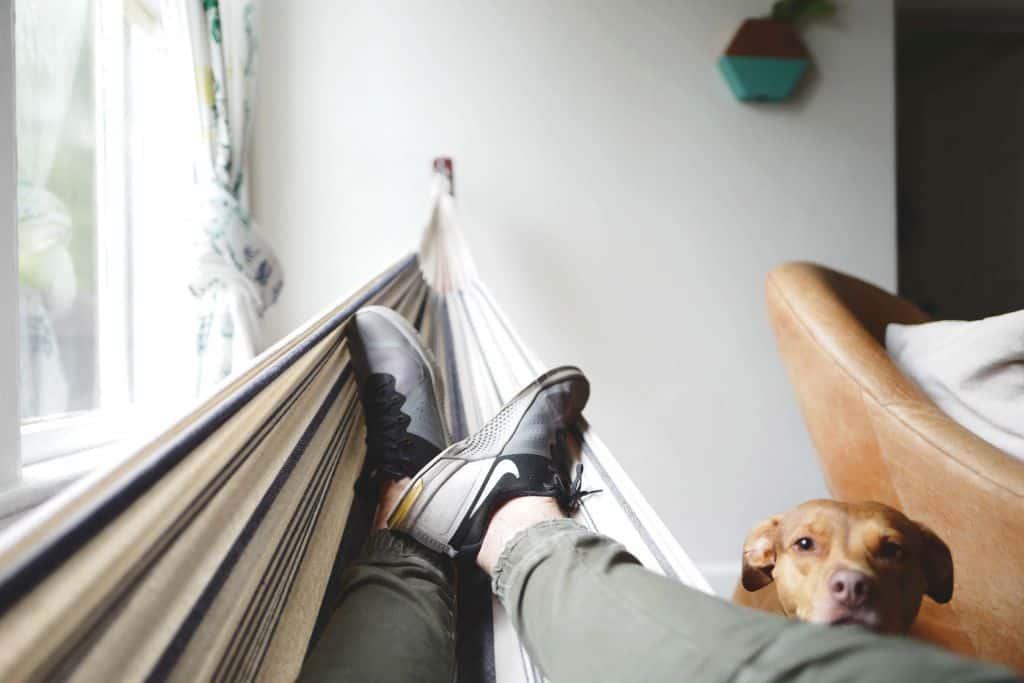 Mężczyzna leżący na hamaku i pies