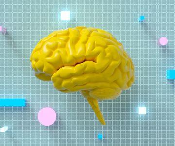 Żółty model mózgu