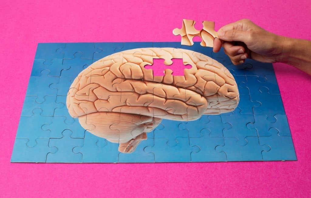 Puzzle przedstawiające ludzki mózg